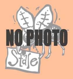 画像1: アースグランナー デジタルリストウォッチ(11月)